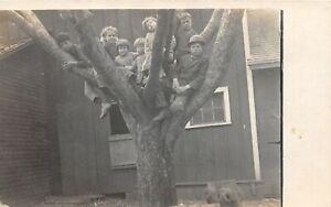 H30/ Castleton Illinois RPPC Postcard c1910 Tree Climbing Kids in Danger Cute
