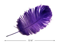 "10 Pieces - 12-16"" Purple Ostrich Tail Feathers Centerpiece Halloween Mardi Gras"