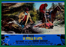 T62 FOTOBUSTA LA STELLA DI LATTA JOHN WAYNE Mc LAGLEN GRIMMERS KENNEDY 4