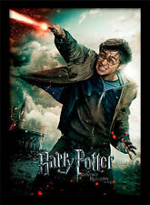 Harry Potter Deathly Hallows Part 2 Wand - Framed 30 x 40 Official Print