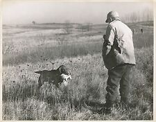 Concours Chien Chasse 1944 - Mr Ben Boalt Golden Retriever USA - GF 393