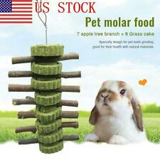 1x Pet Teeth Grinding Toys Tree New Supplies Animal Rabbit Hamster Hanging