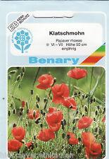 Klatschmohn Mohnblume Klatschrose Heilpflanze 1000 Papaver Pflanzen Benary Samen