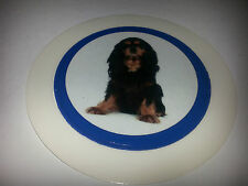 QTY 1 (ONE) TAX DISC holders - permit holders- dog ref 19