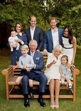 """ROYAL FAMILY LAUGHING FOR PRINCE CHARLES' 70TH BIRTHDAY FRIDGE MAGNET 5"""" X 3.5"""""""