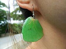 REAL Monarch Butterfly Wings Earring Jewelry 925 sterling Hook! pick colour!