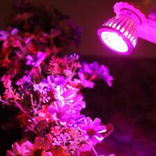 E27 10W LED Grow Light Flower Indoor Plant Hydroponics Full Spectrum Lamp Lights