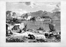 Stampa antica LAGO MAGGIORE Isola Bella e Isola Pescatori 1877 Old print