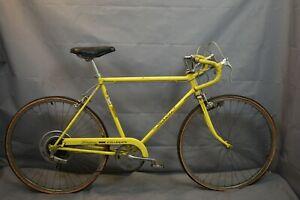 1974 Schwinn Collegiate Sport Touring Road Bike 56cm Medium Steel USA Charity!!!