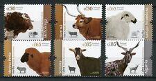 Portugal 2018 MNH Portuguese Breeds Cows Sheep Goats 6v Set Farm Animals Stamps