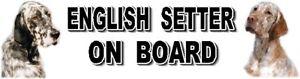 ENGLISH SETTER ON BOARD Car Sticker By Starprint