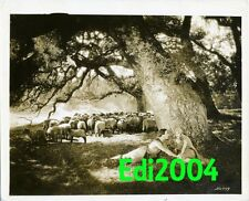 GEORGE O'BRIEN & DOLORES COSTELLO Vintage Original Photo 1928 Noah's Ark Still