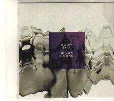 (DT958) David's Lyre, Hidden Ground - DJ CD