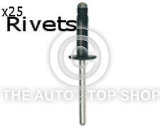 Rivets Aluminium Alloy Steel Manderal Renault Kangoo/Laguna etc 11555 25PK