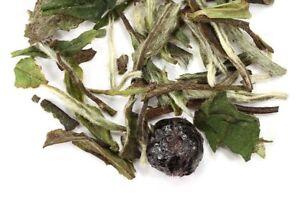 White Blueberry loose leaf tea
