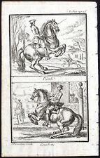 Antique Print-PESADE-COURBETTE-HORSE-RIDING FIGURE-Parrocel-1769