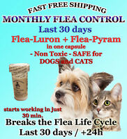 24 Fea Killer PLUS Flea Control for Dogs /Cats 2-30lb 165mg+15mg Quick results