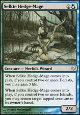 MTG Magic - (U) Eventide - Selkie Hedge-Mage - SP