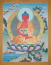 """26.25"""" x 20.5"""" Amibabha Buddha Buddhist Karmakoti Thangka/Thanka Painting Nepal"""