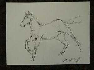 Original signed pencil drawing sketch on ivory paper of a horse galloping
