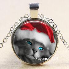 Gray Cute Cat Photo Cabochon Glass Tibet Silver Chain Pendant Necklace