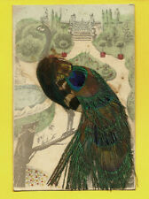 1906 Original Postcard with Real Ostrich Feathers Attached From New Orleans,