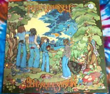 HELP YOURSELF Beware The Shadow UNITED ARTISTS RECORDS 1972 Near Mint R*A*R*E