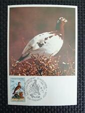 ANDORRA MK 1979 SCHNEEHUHN SNOW GROUSE MAXIMUMKARTE MAXIMUM CARD MC CM c5178
