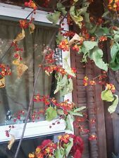 PRiMiTiVE Real Bittersweet Vines ✿ Garland HomeStead Autmn FarmHouse Fall Decor
