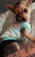 Tea Cup Chihuahua (XS Size 6) Light Blue & White Cosy Fleece Pet Dog Clothes