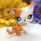 Toys, Mini Pet Shop, Short Hair, Cat Ooak Custom, Hand Painted