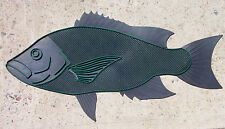 Long Island Door Mat - Sea Bass, Black Fish, Tautog, Saltwater Fish Doormat New