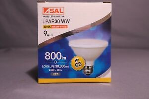 SAL 9W LED ES PAR30 WARM WHITE FLOOD