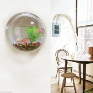 Acrylic Mini Aquarium Fish Tank Wall Hanging Hydroponic Plant Bowl Decor 10*10cm