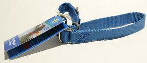 PetSafe Martingale Dog Collar - Royal Blue Small