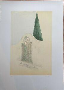 Alessandra Cancogni litografia il Cancello 70x50 firmata numerata 27/50