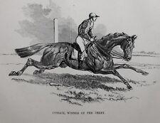 1831 ANTIQUE FARRIER HORSE PRINT ~ COSSACK WINNER OF THE DERBY