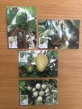 Madeira - 1990 Fruits and Plants of Subtropic region Complete - Maxi Cards