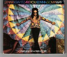 (HJ361) Lenny Kravitz, Are You Gonna Go My Way - 1993 CD 1