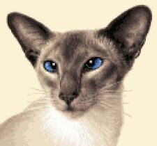 SIAMESE CAT, KITTEN - Full counted cross stitch kit