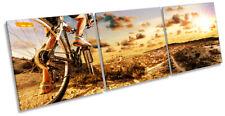 Mountain Bike Extreme Sports Print CANVAS WALL ART Triple Picture Orange