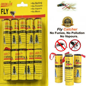 Fly Insect Catcher Paper Sticky Glue Strong 10 Rolls Bug Trap Killer Tape Strip
