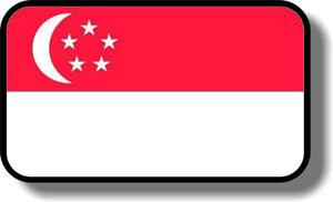 Vinyl sticker/decal Medium 120mm  Singapore flag