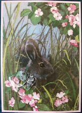"Bunny Hideaway Sunset Jiffy Crewel Embroidery Kit 16048, 5"" x 7"""