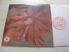 LIBRARY BERRY MUSIC THE LATIN FLUTES Muito Obrigado BLOSSOM REC.70s LP*NM*