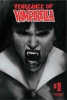 VENGEANCE OF VAMPIRELLA #11 OLIVER 1:30 B&W VARIANT 2020 DYNAMITE 10/21/20 NM