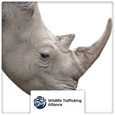$50 Charitable Donation For: The Wildlife Trafficking Alliance