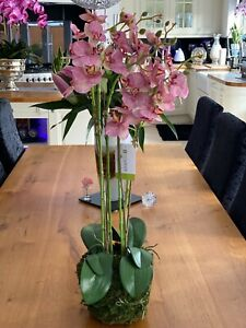 Artificial Phalaenopsis pink/white orchids on moss mound 70cm height