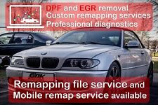 Professional Remap Custom File Service For Diesel & Petrol ALL tools WINOLS