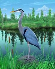 NEW 20x24 Limited Edition Great Blue Heron Art Print